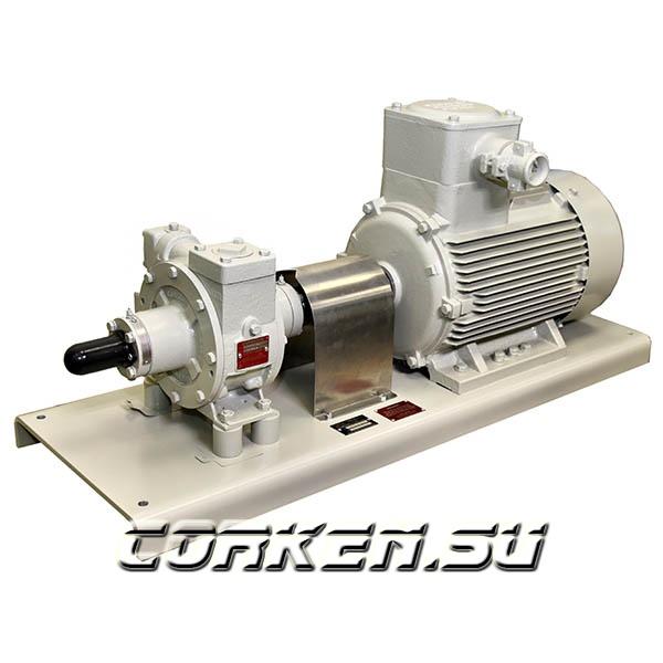 FAS 21708 Установка самовсасывающая комплектная 100 л/мин